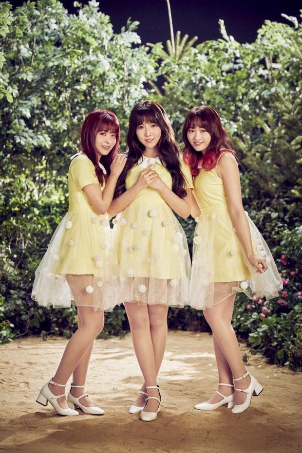 Nhóm nhạc nữ gồm toàn diễn viên khiêu dâm sắp sửa ra mắt tại Hàn Quốc.