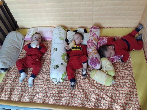 Cả 3 cứ ăn no, chơi với mẹ rồi mệt thì lăn ra ngủ. Ảnh: NVCC.