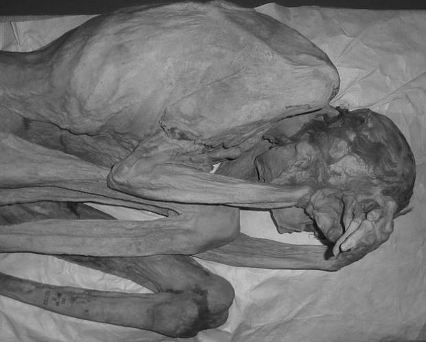 Xác ướp nữ có tên là Gebelein có một số hình xăm hình chữ S trên cơ thể.