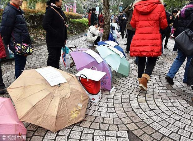 Những chiếc ô có đính kèm tờ giấy ghi rõ thông tin về con họ như chiều cao, cân nặng, việc làm, gia cảnh, sức khỏe cha mẹ, thậm chí cả tài sản của gia đình, được bày la liệt trong công viên.