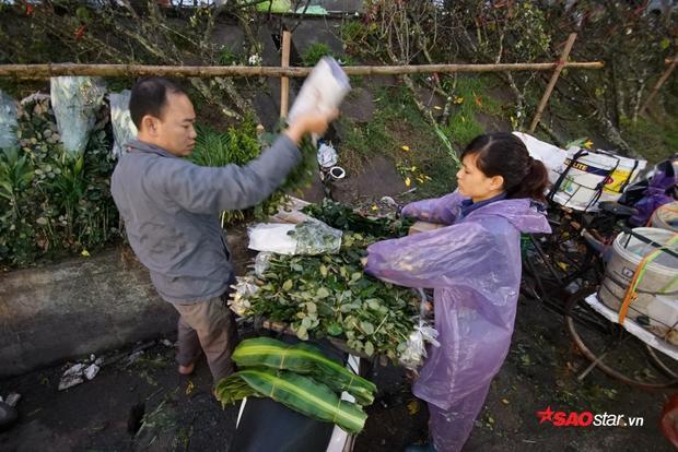 Người dân ở Nhật Tân cắt và chở hoa thẳng lên chợ đầu mối bán rong.