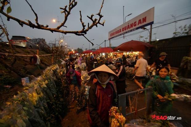 Thời gian từ nửa đêm đến lúc tảng sáng, chợ hoa càng đông đúc hơn.