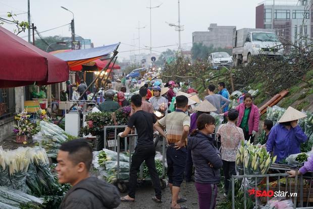 Theo nhiều tiểu thương, giá hoa tại chợ năm nay cũng không có nhiều biến động so với mọi năm, do nhu cầu và nguồn hoa năm nay tương đối ổn định.