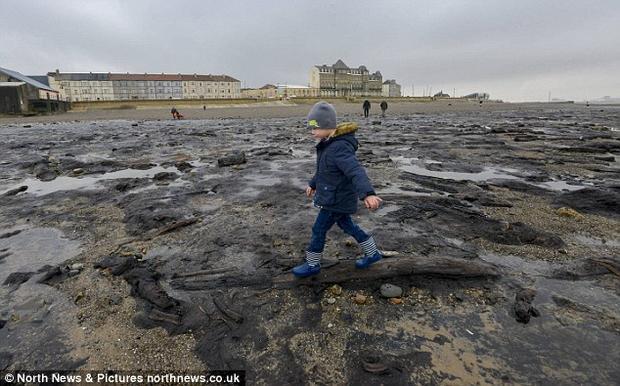 Bên cạnh đó, người ta cũng phát hiện vài viên đá đánh lửa cùng một số vật dụng khác, chứng tỏ sự sống của con người.Ảnh: North News