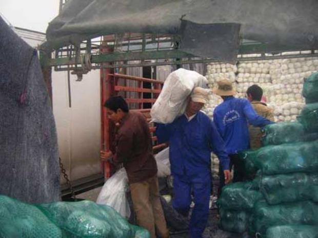 Những người làm nghề cửu vạn tại vùng biên Lào Cai. Ảnh: T.L