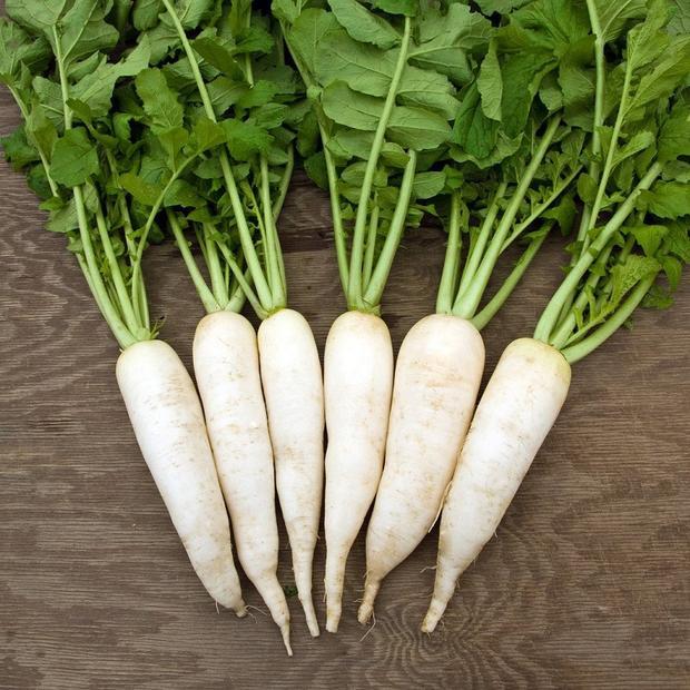 Trong củ cải trắng có chứa rất nhiều những chất cần thiết để phục vụ cho sức khỏe con người.