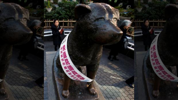 Tượng đồng của Hachiko tại trạm nhà ga Shibuya, Tokyo. Ảnh: Reuters
