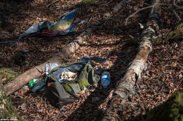 """Hình ảnh trong khu rừng """"tự sát"""" Aokigahara khiến nhiều người vừa ám ảnh, vừa xót xa."""