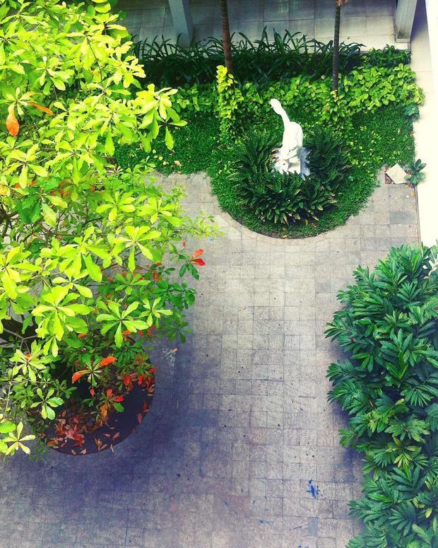 Một góc sân trường nhìn từ trên xuống - (Instagram: Haru)