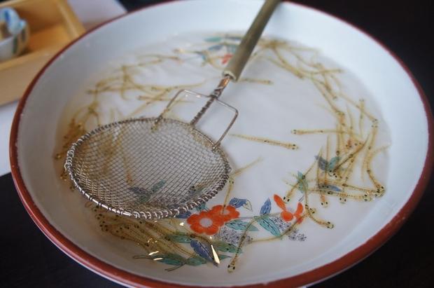 Hirouo là những chú cá rất nhỏ, trong suốt và được ăn sống. Chúng có ngoại hình trông giống những con lươn gương và dài 13 cm.