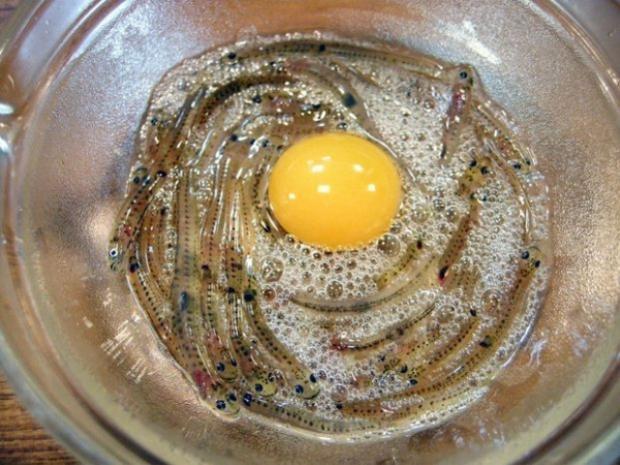 Người ta đựng cá Shirouo trong một bát lớn có chứa ít nước, sau đó chuẩn bị thêm một quả trứng cút sống và chút giấm.