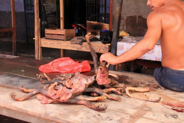 Thịt khỉ được bày bán công khai. Ảnh: Go no mad