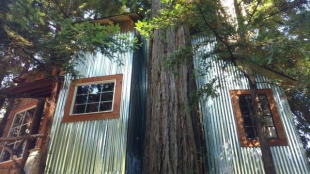 California Redwood Retreat (từ 141 USD/đêm): Ngôi nhà trên ngọn cây này tọa lạc ở khu rừng Redwood ở California (Mỹ). Đây là một nơi hoàn hảo cho những người yêu thích thiên nhiên. Với trần nhà cao, cầu thang xoắn ốc bằng gỗ sồi, điện mặt trời, ngôi nhà này cũng là lựa chọn thú vị cho những ai đang tìm kiếm một không gian rời xa công nghệ.