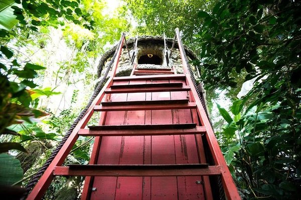 Studio nghệ sĩ ở Việt Nam (từ 50 USD/đêm): Ngôi nhà trên ngọn cây này được thiết kế bởi kiến trúc sư Đào Anh Khánh đẹp như một tác phẩm điêu khắc. Từ đó, một studio giữa một vườn cây xanh tươi với nhiều tác phẩm khác của Khánh được ra đời.