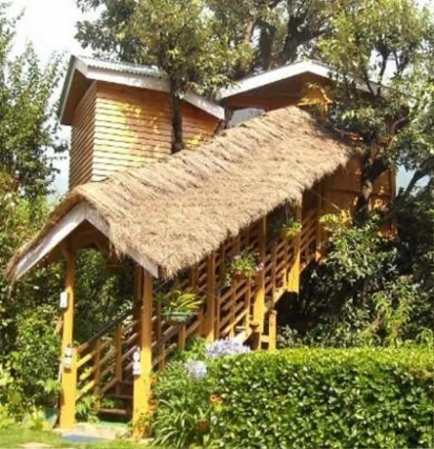 Ngôi nhà gỗ Ấn Độ (từ 63 USD/đêm): Đây đích thị là một ngôi nhà gỗ trên cây có tầm nhìn hướng ra toàn bộ dãy Hymalaya. Căn nhà này chính là điểm dừng chân lý tưởng dành cho những người không hứng thú với việc di chuyển.