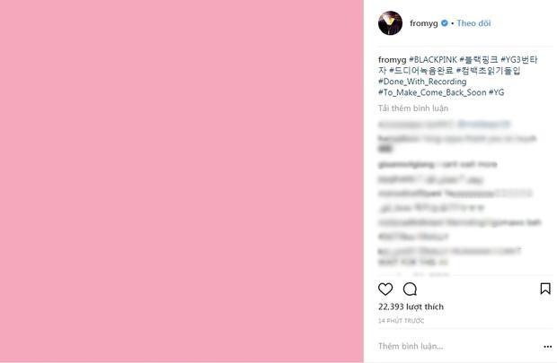 YG thông báo BlackPink đã thu âm xong…