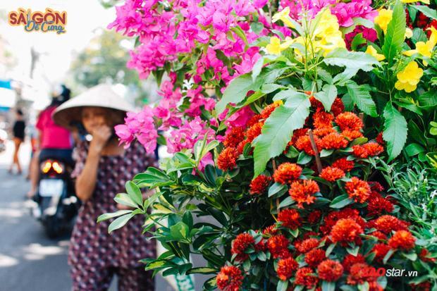Ấy thế nó không còn là cái nghề mà còn cả cái tình nghĩa, cái câu chuyện đời, chuyện phố ở Sài Gòn trên xe.