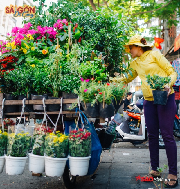 Chị Thường bảo: 20 năm ở Sài Gòn là 20 năm chị chở theo chiếc chợ xanh sau lưng đi bán khắp phố.