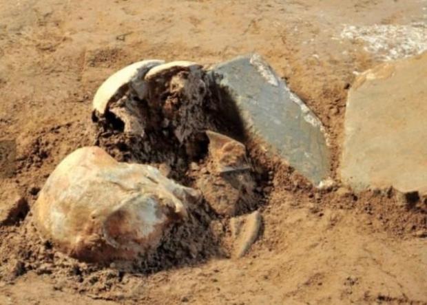Xương sọ được cho là của Tào Tháo. Ảnh Sohu