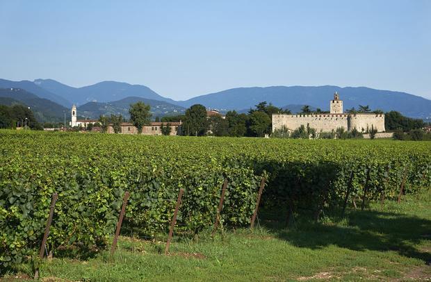 Trên đường đến hồ Garda, du khách được dừng chân tại các vườn nho Franciacorta - địa danh nổi tiếng với phương pháp chế biến rượu vang cổ điển để học phương pháp làm rượu vang và thưởng thức rượu sản xuất từ những năm 1961.
