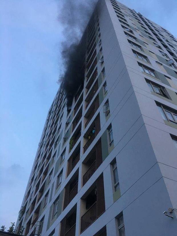 Được biết khói bốc ra từ một căn hộ tại tầng 8.