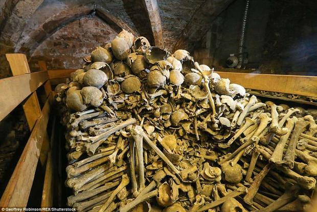 Thế nhưng, đằng sau ngăn tủ xương sọ là rất nhiều các mảnh xương từ các bộ phận khác, xếp chồng chất lên nhau.Ảnh: REX