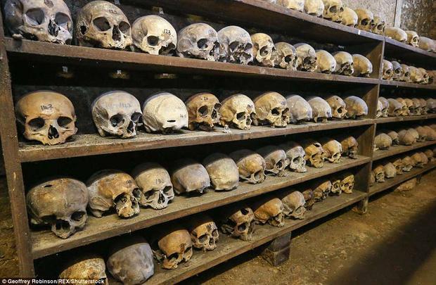 Tại đây, những bộ xương sọ được xếp ngay ngắn trên kệ gỗ.Ảnh: REX