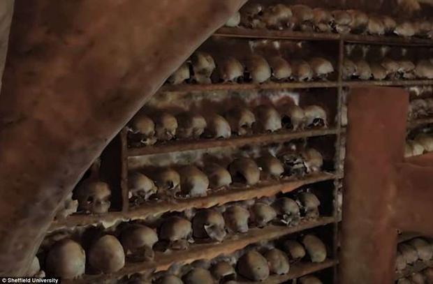 Căn hầm được phát hiện vào năm 1700 khi một người vô tình đi vào căn hầm và giẫm lên các bộ xương.Ảnh:Sheffield University