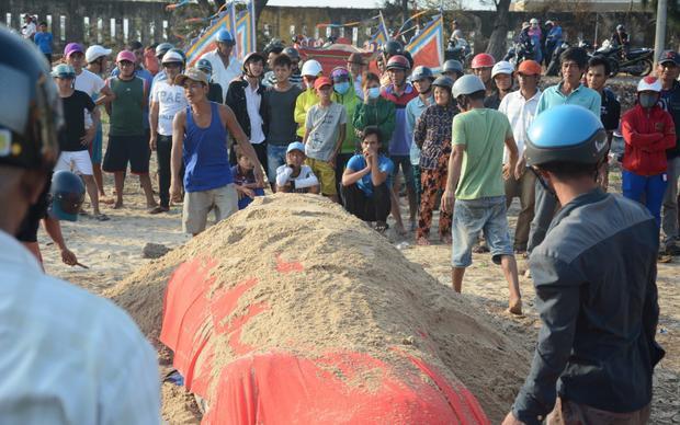 Xác cá voi nặng hơn 2,5 tấn được ngư dân phát hiện và làm lễ mai táng.