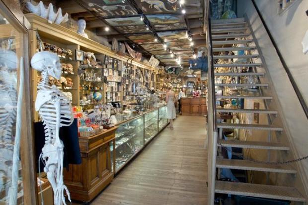 Cửa hàng trông khá đẹp đẽ, sáng sủa. Ảnh:Courtesy Evolution Store