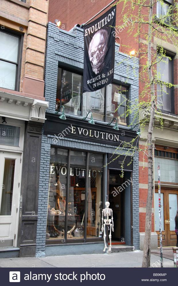 Bên ngoàiEvolution Store
