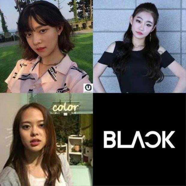 Dàn thực tập sinh xinh xắn đến từ The Black Label (công ty con của YG).