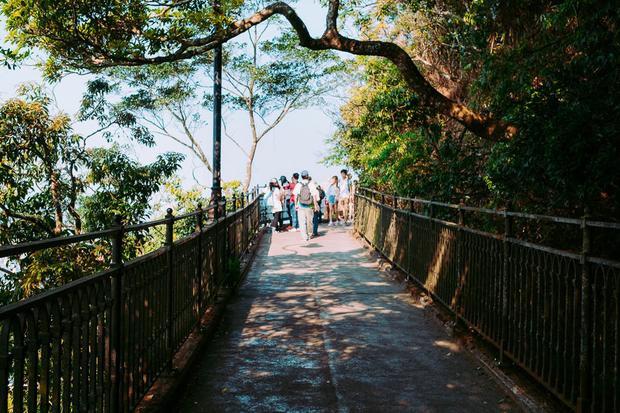 Victoria Peak là một trong những chuyến đi trong ngày phổ biến của người dân Hong Kong. Tại đây có sẵn các dịch vụ như picnic gia đình, chạy việt dã từ thiện, lái xe đạp qua nhiều con đường của công viên. Tại đây cho cảm giác như một phiên bản hòa trộn hoàn hảo giữa Central Park và Beverly Hills.