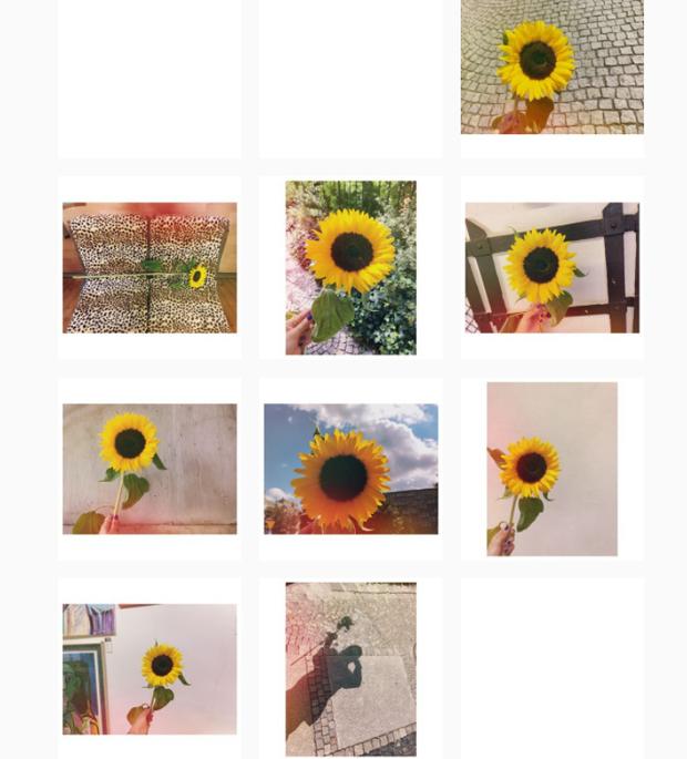 """Còn vào ngày kỉ niệm 8 năm hoạt động của T-ara vào ngày 29/7/2016 (sau hơn 2 tháng Soyeon kết thúc hợp đồng), cô đã đăng 8 tấm ảnh hoa hướng dương - biểu tượng của Queen's và T-ara mà không ghi bất cứ lời gì. Dù im lặng nhưng các fan luôn biết """"Soyeon yêu T-ara hơn bất cứ thứ gì cô có""""."""