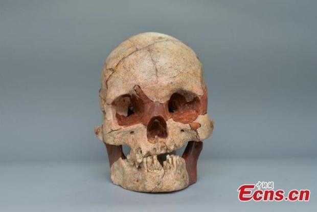 Hộp sọ 16.000 năm tuổi được tìm thấy. Ảnh: Ecns.cn