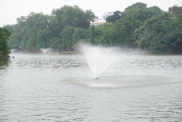 Phía công ty đã tiến hành kết hợp với việc vận hành máy sục khí để đánh tan, giảm sự kết dính mặt nước màu xanh.