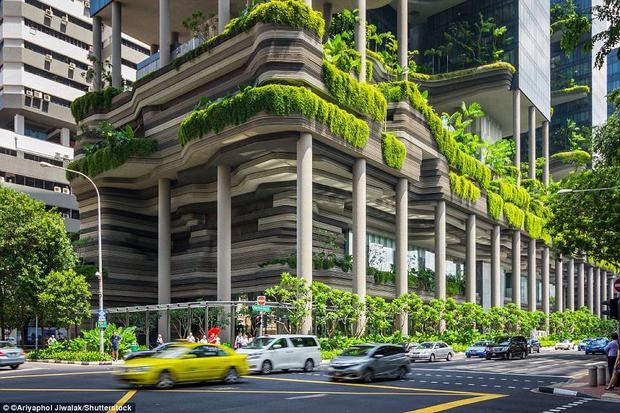 Khách sạn Park Royalnằm ở trung tâm Singapore, được xây dựng vào tháng 12/2009. Nơi đây có tổng diện tích 15.000 m2 chỉ dành riêng cho việc cấy trồng cây xanh. Ngoài ra, bên trong tòa nhà còn trang bị thêm hồ bơi, thác nước và ruộng bậc thang.Ảnh:Shutterstock