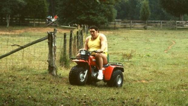 Với kích cỡ ngoại hạng của mình, André Người khổng lồ khiến bất cứ vật gì mà ông sử dụng cũng trở thành đồ chơi.
