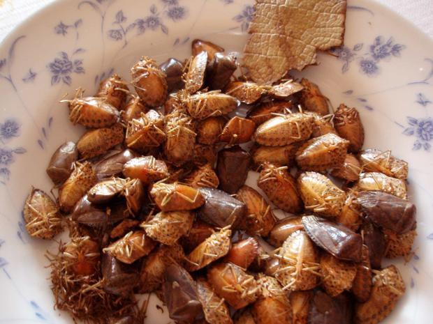 Jumiles là món chứa loài côn trùng xanh giòn trứ danh vùng Tây Nam Mexico. Điểm đặc biệt của nó so với những món ăn côn trùng khác là côn trùng sẽ không qua chế biến mà ăn sống ngay. Jumiles sống có vị quế và thường được thêm vào taco, tuy nhiên cũng có thể nghiền và chiên trong chính chất nhờn của côn trùng để giúp nó dễ ăn hơn.