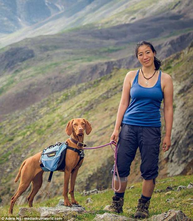 Chú chó Whiskey, 4 tuổi, thuộc giống chó Vizsla của Hungary, có sở thích đi du lịch vòng quanh thế giới cùng cô chủ Adele Ng đến từ thành phố Vancouver, Canada.