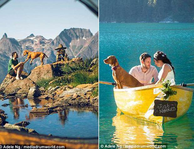 Whiskey cùng vợ chồng cô chủ khám phá nhiều địa điểm có phong cảnh đẹp ở khắp nơi trên thế giới.
