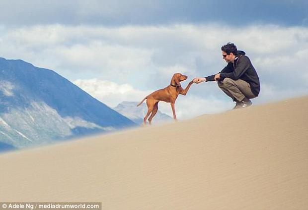Chú chó cũng rất biết tạo dáng, phối hợp ăn ý khi chụp ảnh.