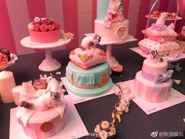 Những chiếc bánh kem được trang trí bằng các chú mèo - con vật yêu thích của nữ diễn viên.
