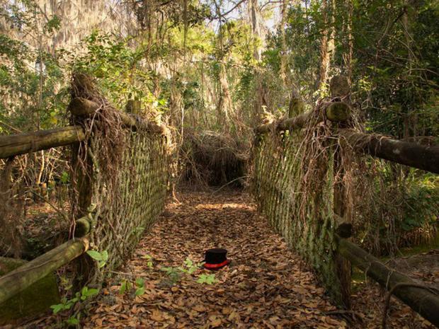 Công viên nước đầu tiên của Walt Disney được mở tại Orlando, Florida vào năm 1976. Tuy nhiên vào năm 2001, nó đã phải dừng hoạt động, sau khi các công viên khác của Disney trở nên nổi tiếng và thu hút nhiều khách hơn. Khi lượng khách tham quan giảm xuống, Disney quyết định để nguyên công viên như vậy, thay vì phá hủy nó. Hiện tại, rất nhiều lối đi trong công viên đã bị phủ kín rêu xanh.