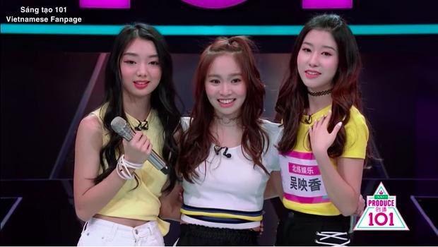 3 ứng cử viên nặng kí cho nhóm nhạc nữ của Sáng tạo 101.
