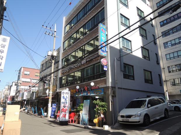 Tất tần tật kinh nghiệm du lịch Hàn Quốc mùa hoa anh đào (Kỳ 1)