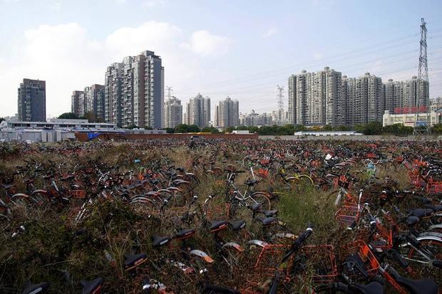 Những chiếc xe không ai đoái hoài trong một bãi đất trống ở Thượng Hải. Lượng xe hỏng và bỏ đi ở Trung Quốc đang ngày càng nhiều lên.
