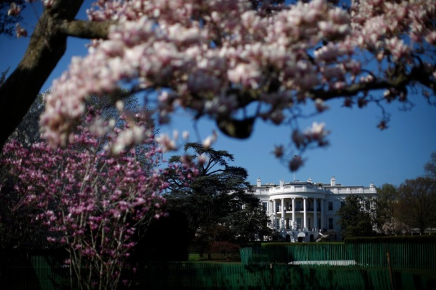 Cố Tổng thống Thomas Jefferson là người đầu tiên biến khuôn viên thành nơi thích hợp để trồng cây và hoa. Sau đó, khoảng 17 đời tổng thống đã trồng cây khắp các khu đất quanh dinh thự. Trong ảnh là cây hoa mộc lan nở hoa rực rỡ ở bãi cỏ phía nam của Nhà Trắng.