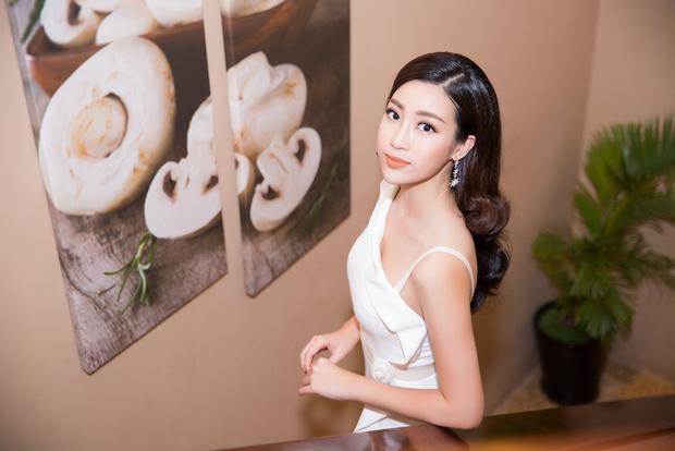 Thời điểm khi Mỹ Linh giành vương miện Hoa hậu, có một số bình luận trái chiều về nhan sắc cho rằng cô không thực sự nổi bật. Thậm chí còn có tin đồn Mỹ Linh can thiệp dao kéo.