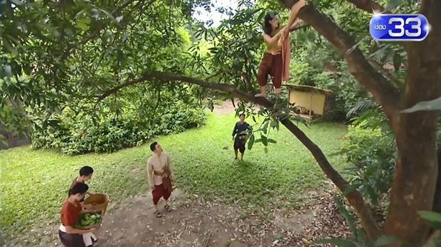 'Ngược dòng thời gian' bản uncut: Bella Ranee trèo cây 3 giây hút 3,3 triệu view, 33 ngàn lượt yêu thích